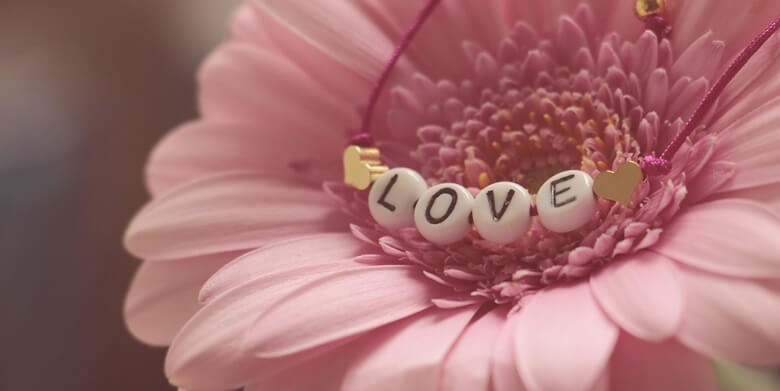 綺麗なピンク色の愛らしい花